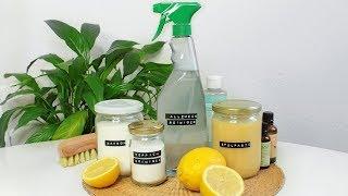DIY natürliche Putzmittel • Allzweckreiniger, Spülmaschinen-Paste, Teppich- & Abflussreiniger