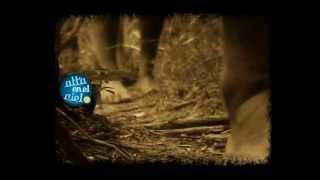 La Masacre de Napalpí (Ciclo Alta en el Cielo 2010)