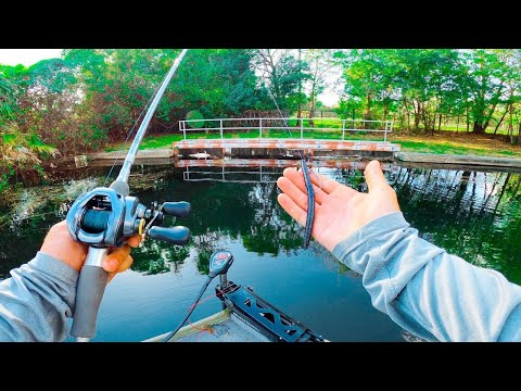 SEARCHING For Beds In Shallow Clear Water Canals For Spawning Bass
