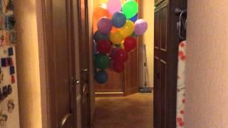 Кошка с воздушными шарами:)