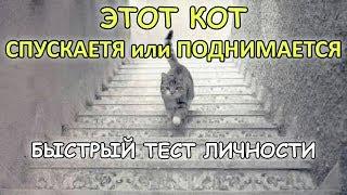 ТЕСТ ЛИЧНОСТИ что делает кошка