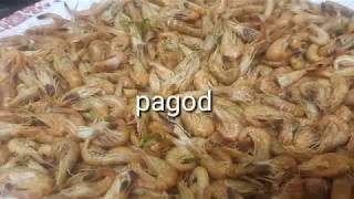 Kuha tau ng Shrimps at HALAAN sa BEACH😍😍😉