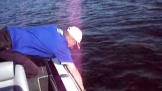 Art of Fishing Guide Service-Orlando/Disney Area