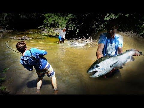 Fly Fishing Summer Steelhead! TINY Creek Skamania Chaos!