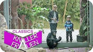 Stillen beim Mittagessen & Kriminelle Affen im Zoo