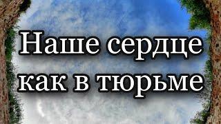 Фото А святые никого и ничего не боятся! Протоиерей  Андрей Ткачёв.