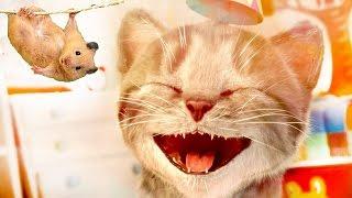 Смешной котик Мой маленький котенок симулятор кота. Little kitten game ios