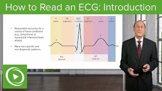 How to Read an Electrocardiogram (ECG): Introduction – Cardiology | Lecturio