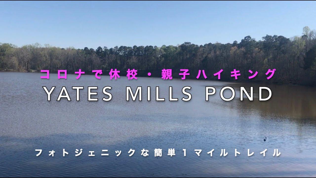 《コロナで休校》Yates Mill Pond Loop Trail