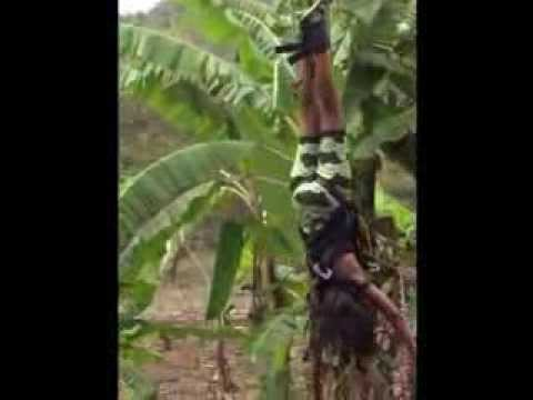 Extreme Bungee Jumping Sagana- Haywire the Screamer