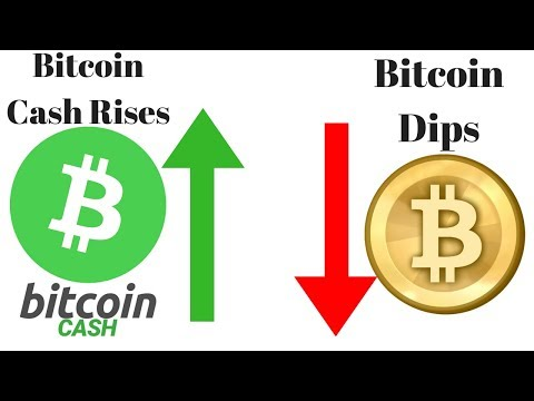 Why Is Bitcoin Cash Rising And Why Is Bitcoin Price Dipping?