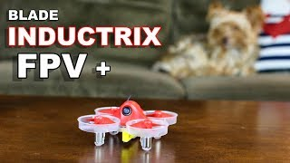 blade Inductrix FPV Plus Indoor Drone - MEOW MODE! - TheRcSaylors