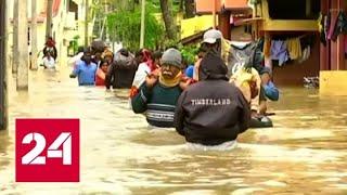 Индию затопило сильнейшими ливнями - Россия 24