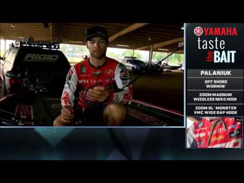 Taste the Bait: Brandon Palaniuk's winning Sam Rayburn setups