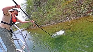 ELECTROFISHING!!! SHOCKING UP BIG BASS With Fish Biologists