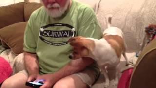 Niño Vs Dog Whistle