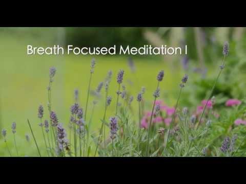 Breath Focused Meditation I