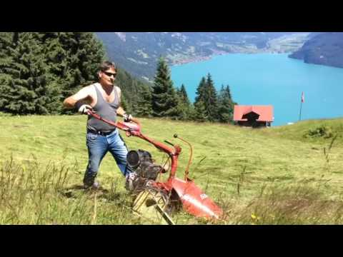 Swiss Mountain Farming