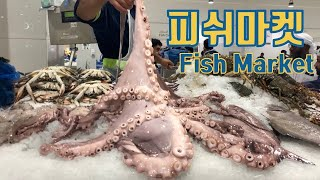 🇦🇪 Dubai Fish Market 1 두바이 피쉬 마켓 ドバイフィッシュマーケット
