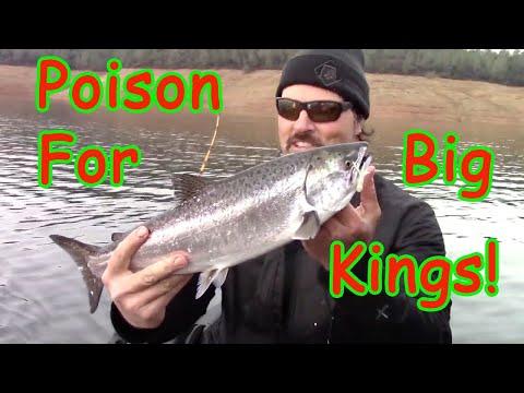 Deadly Combo For Landlocked King Salmon!