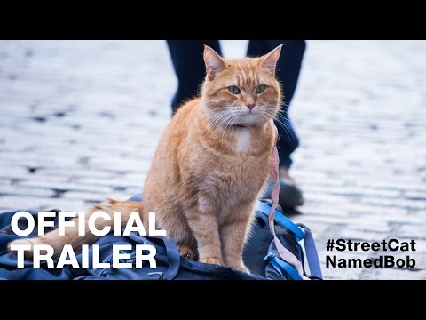 A STREET CAT NAMED BOB - Official Trailer - In Cinemas February 9