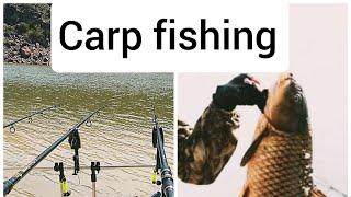 Carp fishing in Armenia part 1 карпфишинг в Армении часть 1 Ձկնորսություն Հայաստանում մաս 1ին