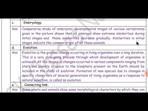 STANDARD 5 | EVS 02 | LESSON 02 | History And The Concept Of 'Time' from YouTube · Duration:  20 minutes 7 seconds
