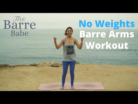 Beginner No Weights Barre Arms Workout