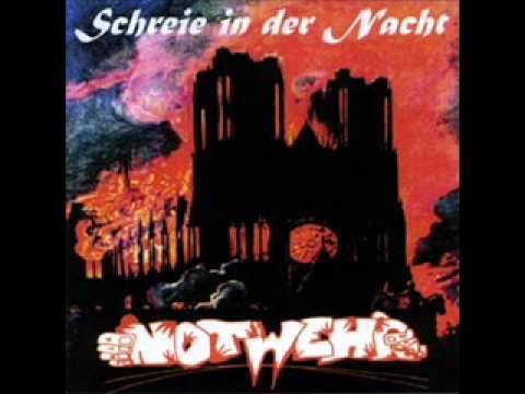 Notwehr-Schreie in der Nacht_0001.wmv