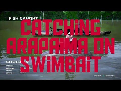 Fishing Sim World Pro Tour Catching Arapaima on Swimbait |