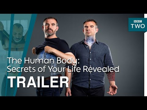 Download Youtube: The Human Body: Secrets of Your Life Revealed - Trailer   BBC Two