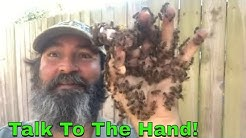 Bees Swarm My Hand But I Ain't Scared!