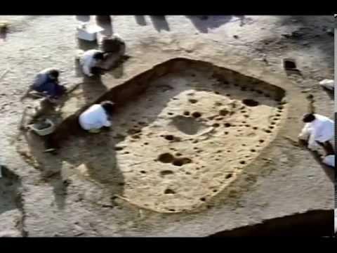 三内丸山遺跡1994