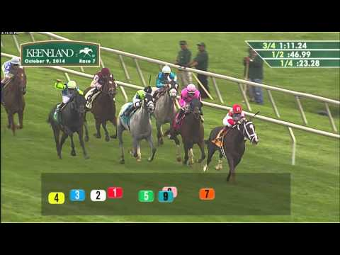 10/9/14 Feature Race, The Falxman Holdings - Coalport