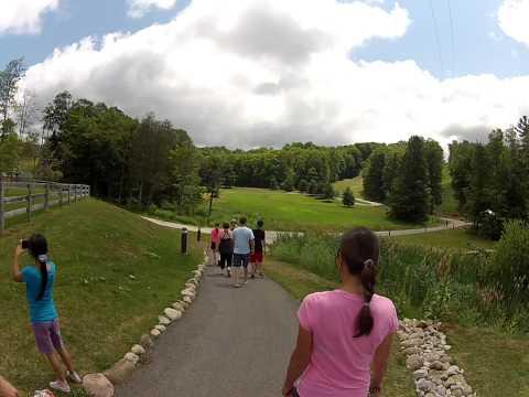 Treetop Trekking Horseshoe Valley Adventure Park (Walking in)