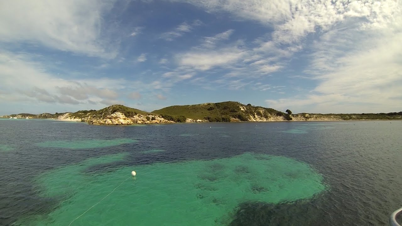 Scuba Diving In Porpoise Bay Rottnest Island With Pda