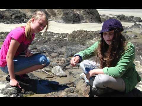 Seashore Summer Writing Adventure Camp