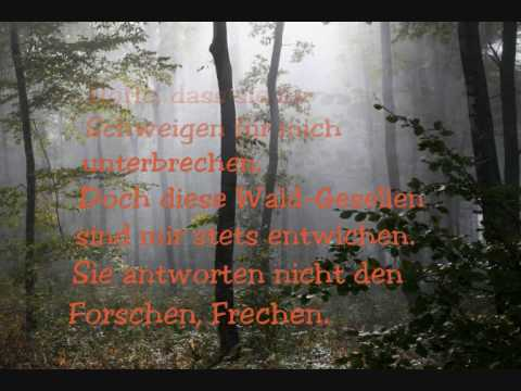Herbstwald. Gedicht von Phil Humor.