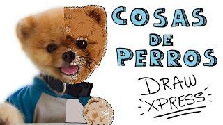 PERROS | DrawXpress
