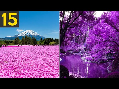 15 Most Beautiful Gardens in the World
