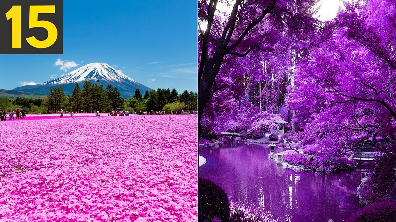Download 15 Most Beautiful Gardens in the World