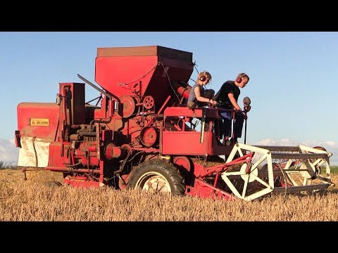 Old Fahr M66 Combine Harvester Working