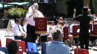 Saltash Town Band play Watching The Wheat