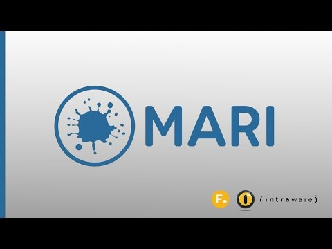 Mari - Introduction, Overview & Demo