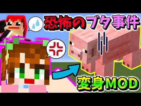 【マインクラフト】変身しすぎて誰が味方かわからねぇよッ!!w【赤髪のとも】meta Morph MOD実況2