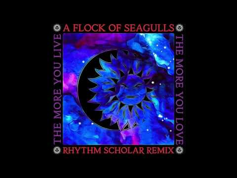 A Flock Of Seagulls - The More You Live The More You Live (Rhythm Scholar Starwave Remix)