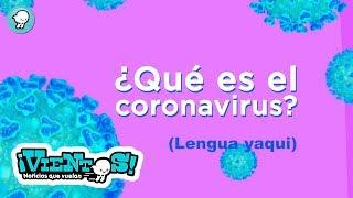 ¿Qué es el Coronavirus? (Lengua yaqui)