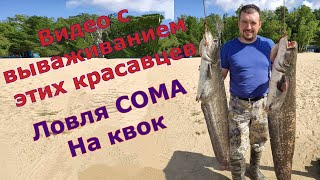 Рыбалка на СОМА! Бешеный клев!