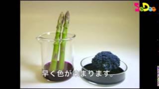 『理科教育ニュース』2014年4月18日号「野菜で比べる維管束のつくり」...