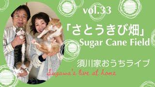 vol.33「さとうきび畑」Sugar Cane Field